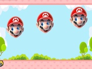 Play Find the false Mario